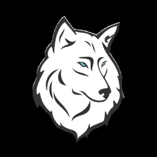 favicon webwolf, contact, kontakt