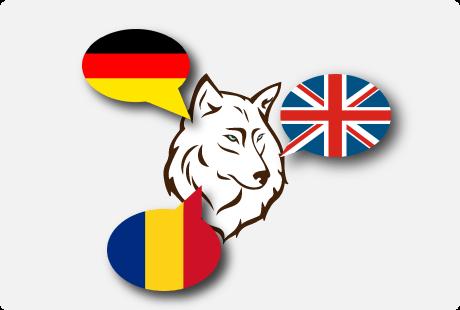 webdesign multilingv